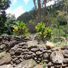 Honolowai Valley